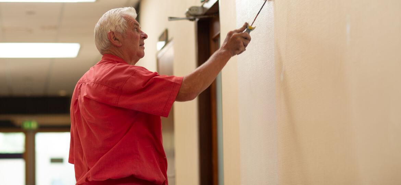 huisschilder noppen